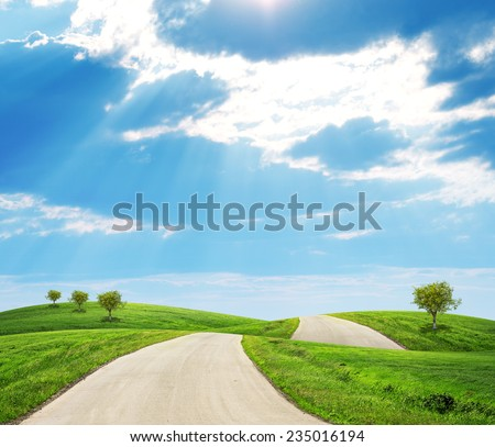 Road running through green hills with a few trees