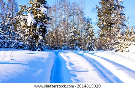 Road ruts covered with snow. Winter snow scene. Road in winter snowy forest
