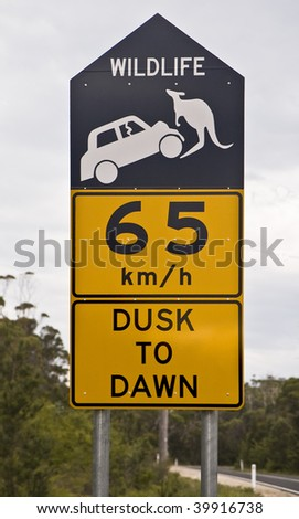 Road sign alerting to the presence of kangaroos and its danger