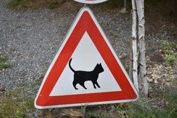 road sign beware of cats