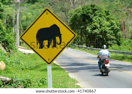 road sign with the elephant in Thailand