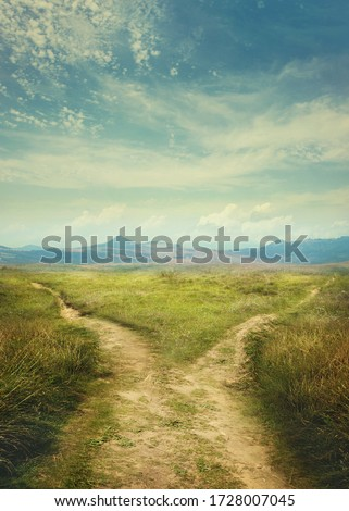 Road splitting in two ways. Fork in the road  Photo stock ©