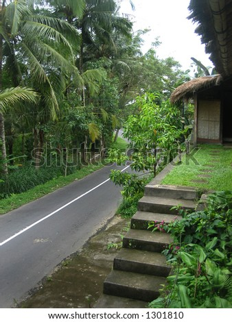 road stairs trees bali