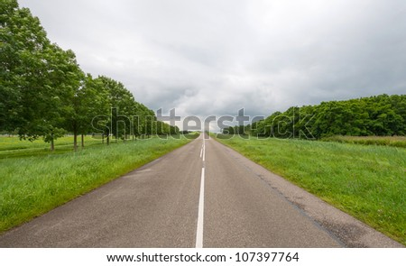 Road surface marking on a countryside road
