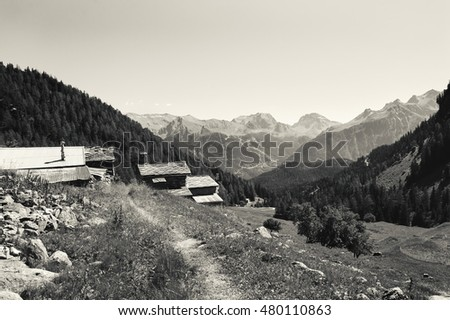 Road through Alpine village. Beautiful view in Vanoise National Park  at French Alps. (Savoie, France). Black and white. #480110863