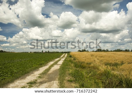 Road through fields and clouds to the sky