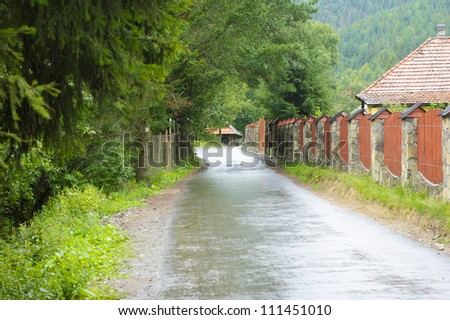 Road through forest and village in Carpathians