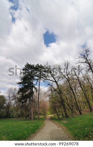 Road through spring park with clouds on sky