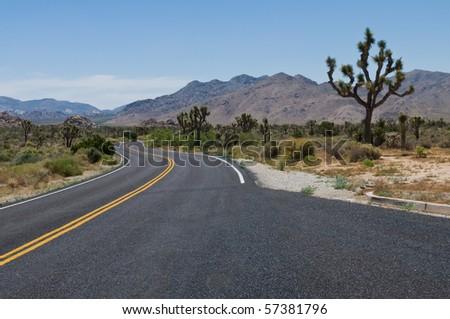 Road through the desert, Joshua Tree National Park, Joshua Tree, California - stock photo
