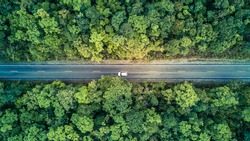 Road through the green forest, Aerial view car drive going through forest, Aerial top view forest, Texture of forest view from above, Ecosystem and healthy environment concept and background.