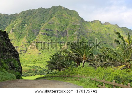 Road to Kaaawa Valley, Oahu, Hawaii