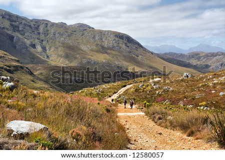 Road to misty mountains. Shot in Hottentots-Holland Mountains nature reserve, near Grabouw, Western Cape, South Africa.