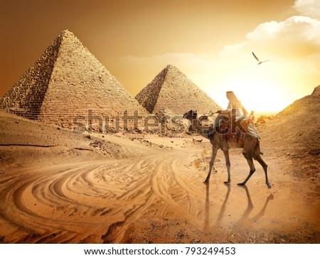 Road to pyramids #793249453