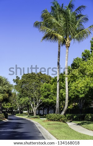 Road to residential community in Naples, Florida