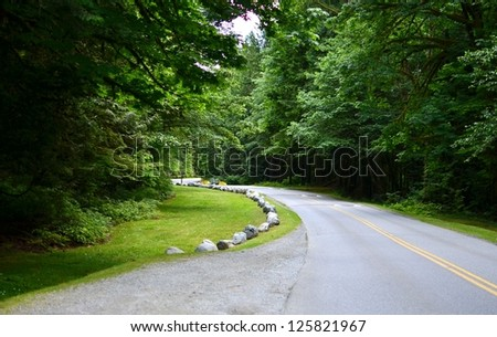 Road to the forest - Shutterstock ID 125821967