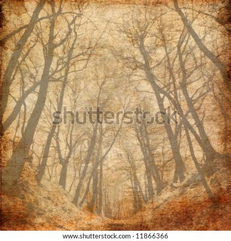 Road to wood-vintage photo