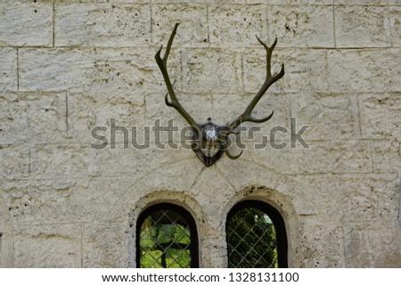 road trip in may deer antlers trophy on castle wall ans two windows
