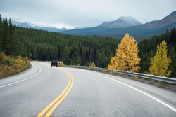 Road trip with rocky mountains in autumn forest at Banff national park, Canada