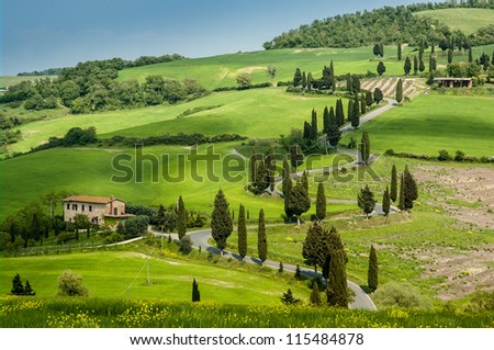 Road with curves and cypresses in Tuscany, Italy - stock photo