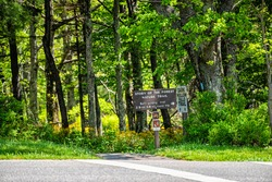 Road with direction sign in Shenandoah Blue Ridge appalachian mountains on skyline drive for dark hollow falls trail and story of the forest nature
