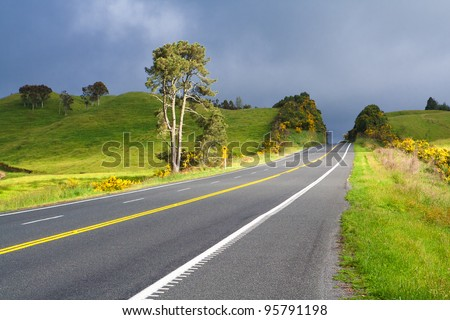 Road With Painted Double Yellow Line. This photo was taken on State Highway between Taupo and Rotorua, New Zealand.