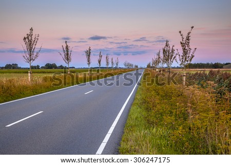 Road with vanishing point in dutch countryside during beautiful sunset