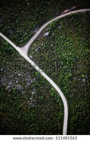 Roads going through forest landscape, aerial view