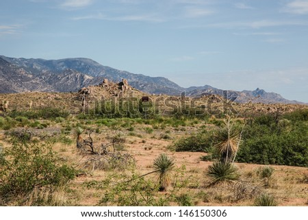 Roadside high-desert scenery with foothills and mountains along highway/Desert Landscape of Mountains and Vegetation/Scene with semi-desert mountains and yucca plants in summer