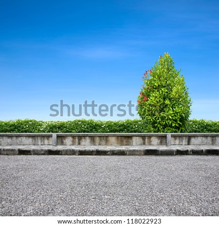 Roadside pavement and tree on blue sky.