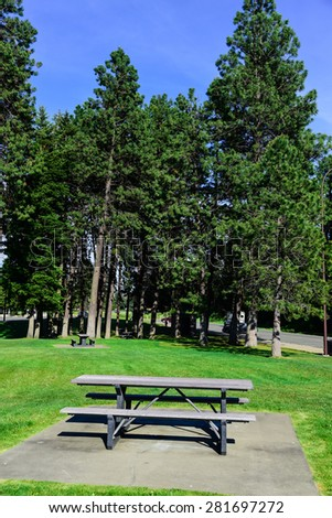 Roadside rest area with a picnic table and many of pine trees in background. A sunny day at a rest area next to the highway I-90 of Washington State, US.