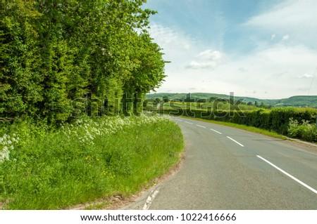Roadside scenery in the summertime. - Shutterstock ID 1022416666