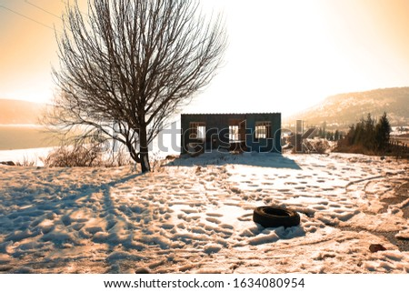 Roadside view in winter with a tree and a derelict containerl house  Stok fotoğraf ©