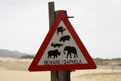 Roadsign Elephant Hippo Crocodile Buffalo Rhino