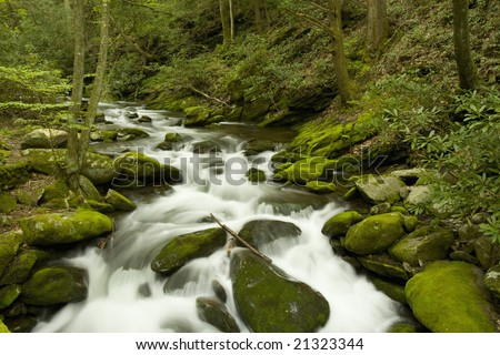 Roaring Fork, Great Smoky Mountains National Park, TN, USA