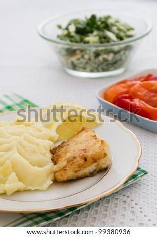 Roast fish steak fresh with mashed potatoes and salad  on white plate.