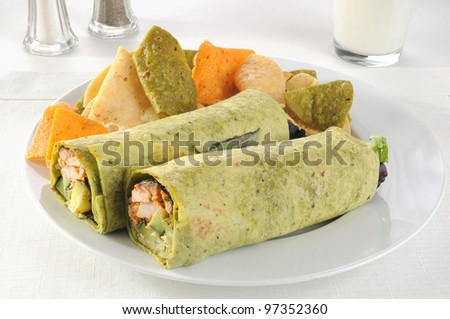 Roasted chicken wrapped in tortillas with fresh vegetables - stock photo