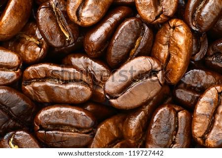 roasted coffee arabica