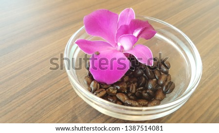 Roasted Coffee Beans background and orchid flower