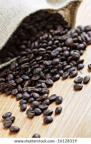 Roasted coffee beans in a rustic canvas bag