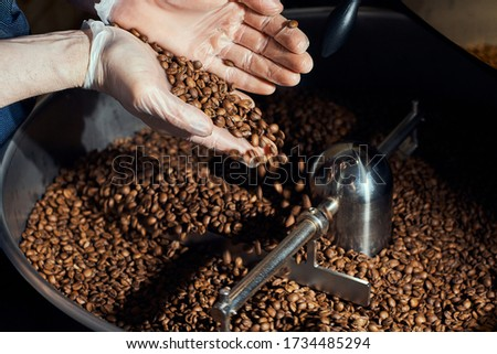 roasted coffee beans in the drum of a roasting machine. Freshly roasted coffee beans in a hand. The production of coffee. coffee factory work