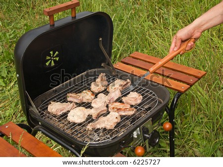 Roasted meat on Grill Barbecue