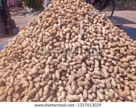 Roasted Peanut Picture