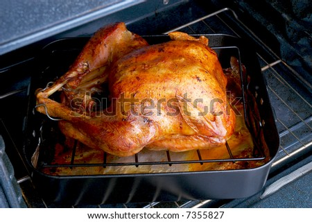 Roasted Turkey in oven ready to be taken out and Carved