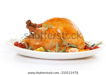 Roasted turkey on tray garnished with red grapes, figs, kumquat, and herbs over white background