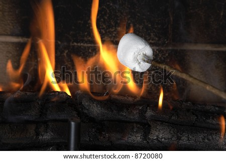 Roasting a marshmallow over a fire.