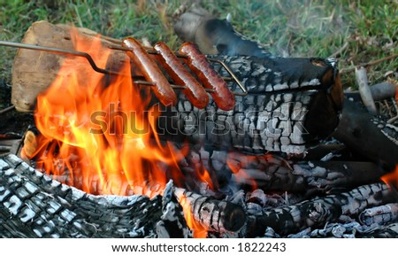 Roasting Hotdogs and Sausage over Campfire