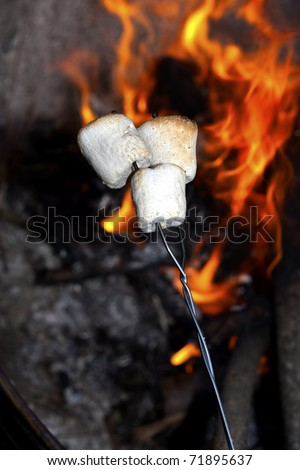 Roasting marshmallows on a stick over the open fire.