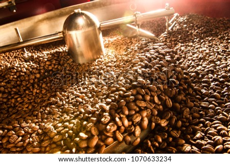 Roasting Plant. Fresh Roasted Coffee. Stainless drum. Industrial electric cooling tray.