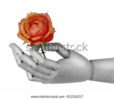 Robot hand holding rose flower over white
