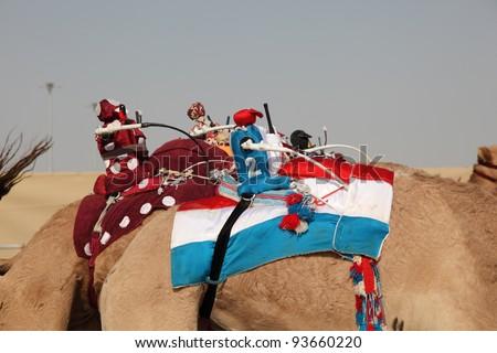 Robot jockeys on racing camels, Doha Qatar